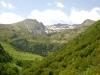 brame-cerf-pyrenees2