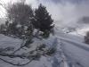 raquettes hiver FG larde livre or13