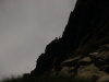 Trekking-pyrenees-valier-isards1