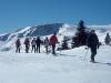 grande faune raquettes pyrenees1