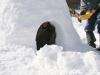 sejour famille neige et raquette1
