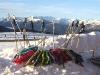 grande faune raquettes pyrenees