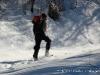 raquette hiver faune pyrenees