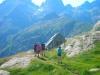trek encantats